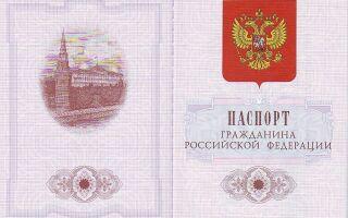 Россия перейдёт на электронные паспорта