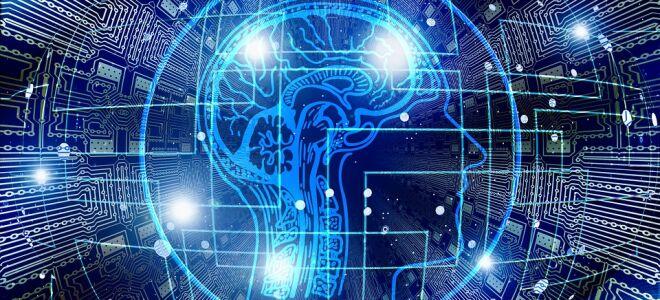 Для обработки обращений через портал госуслуг предложили задействовать искусственный интеллект