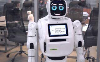 В Пермском МФЦ трудится робот