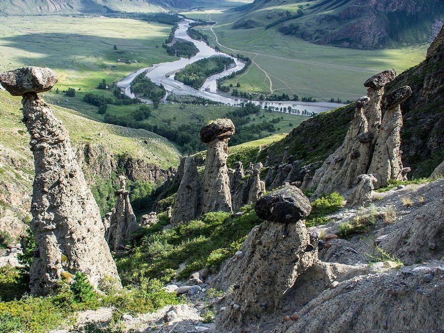 МФЦ Республики Алтай