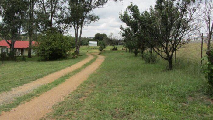 Дорога через участок